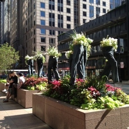 Large chicago streets jeans flowerbeds