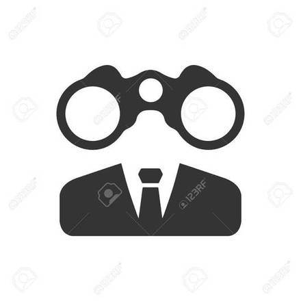 Large business vision icon