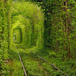 Small tunnel
