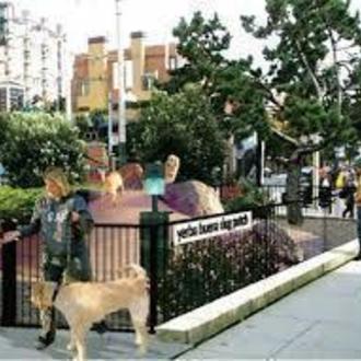 Small Dog Park