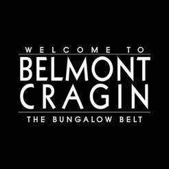 Belmont Cragin Quality of Life Steering Committee