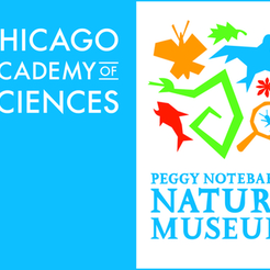 Chicago Academy of Sciences and its Peggy Notebaert Nature Museum